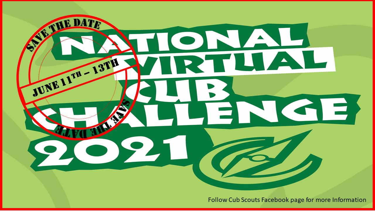 National Virtual Cub Challenge 2021